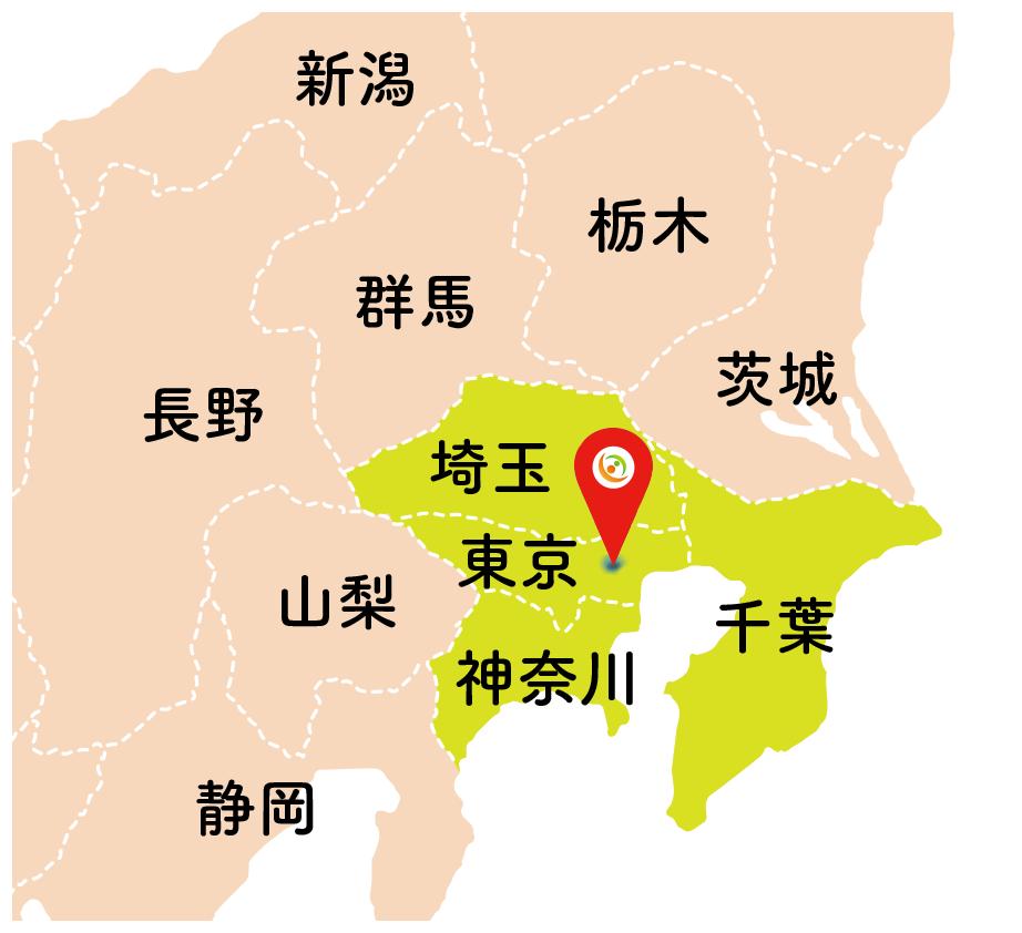 脳梗塞リハビリステーショングループ(国内 関東)